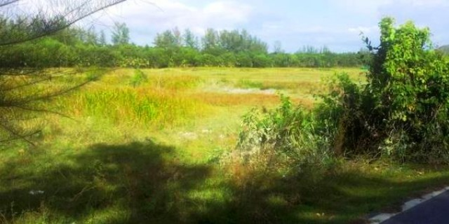 Phuket Land Plot - Bang Tao Beach Plot for Sale Image by Phuket Realtor