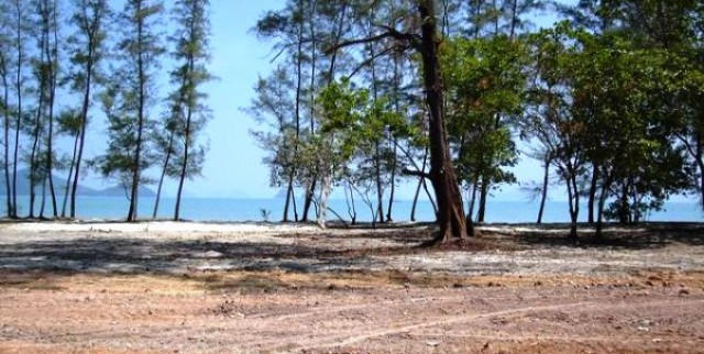 Beachfront Land - Koh Yao Yai Island Plot for Sale Image by Phuket Realtor