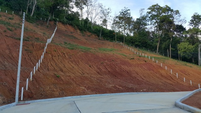 Cleared Land – Kathu Land Plots for Sale Image by Phuket Realtor