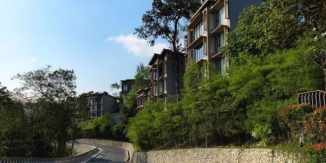 Patong Sea View Branded Apartment For Sale Image by Phuket Realtor
