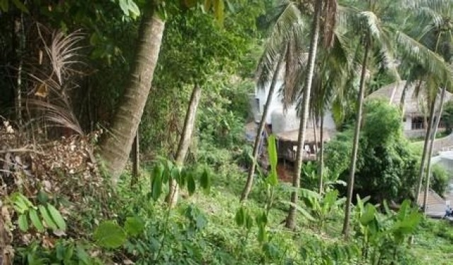 Sea View Land Plot in Kata for Sale Image by Phuket Realtor