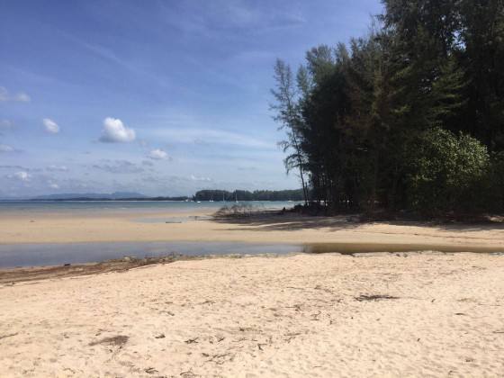 Nai Yang Beachfront Land Plot for Sale (19 Rai) Image by Phuket Realtor