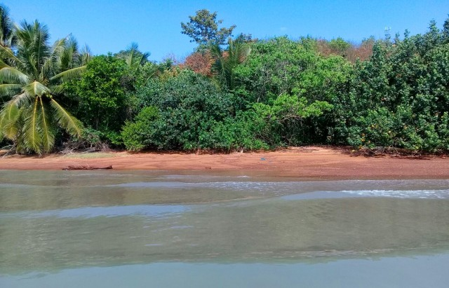 Land for Sale in Thailand | Beachfront Land Plot on Koh Yao Noi Image by Phuket Realtor