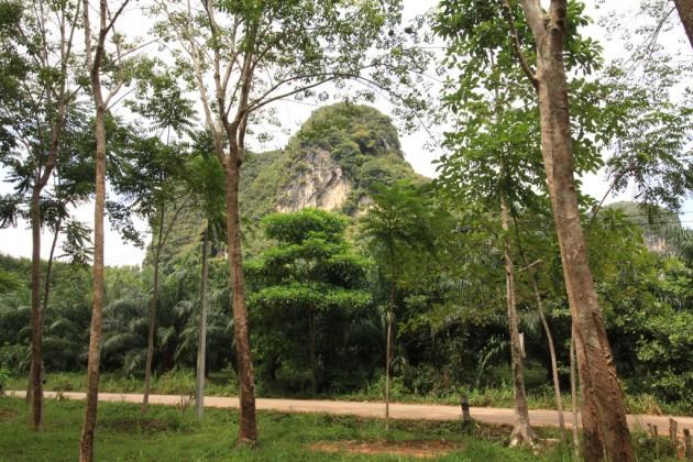 Scenic Ban Nai Rai | Krabi Land Plots for Sale | Chanote Title Image by Phuket Realtor