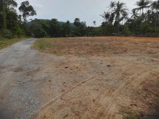 Mai Khao Beach Phuket | 8.3 Rai Land Plot w/ Laundry Facility Image by Phuket Realtor