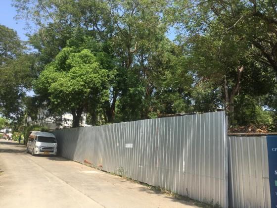 Seller Flexible   Land for Sale in Rawai Phuket Thailand   Can Split Up Plot Image by Phuket Realtor